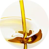 油溶性プラセンタエキス